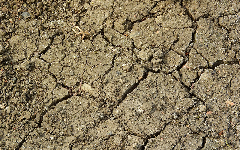 A close-up shot of the dry and cracked ground, with dirt flaking off.