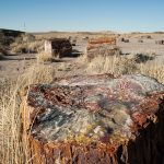 Helium producer leases land near Petrified Forest in Arizona, concerning environmentalists