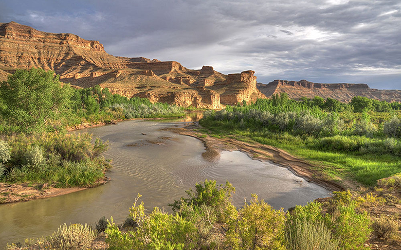 The White River in Colorado with low water levels.