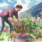 Harvesting Solar Could Help Small-Scale Farmers Improve Sustainability