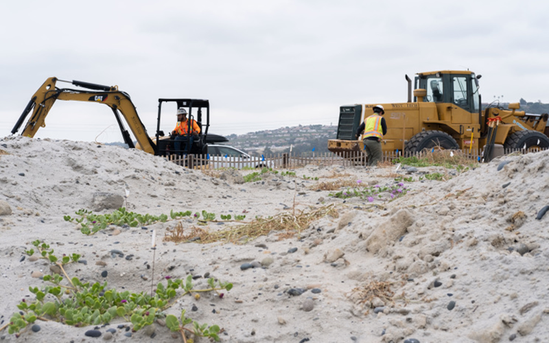 Workers moving sand as apart of the Cardiff Beach Living Shoreline Project.