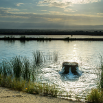 Tempest in a Teapot: Can California Better Use Winter Storms to Refill its Aquifers?