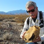 Desert Tortoises Affected by Slow Response to Climate Change